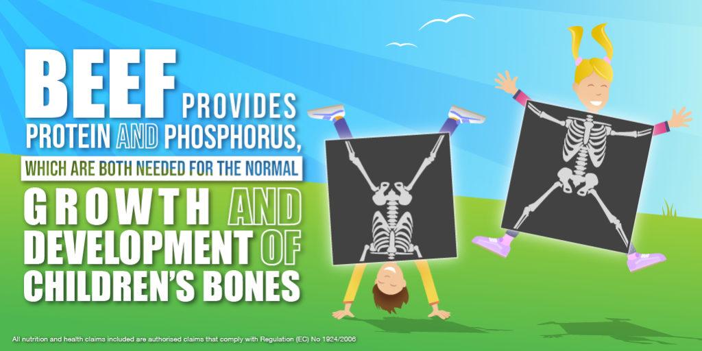 BEEF_Health_Twitter__04 Children's Bones