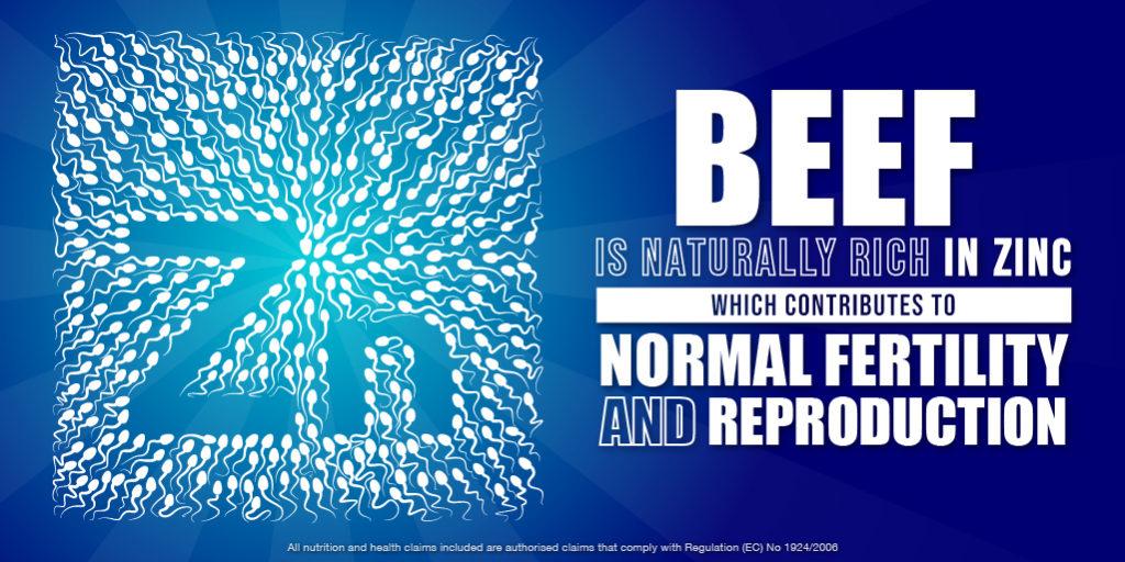 BEEF_Health_Twitter__05 Fertility