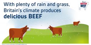 GBBW Britain's climate